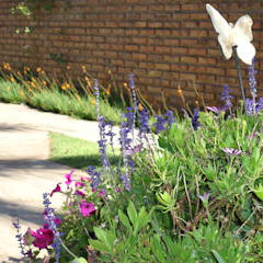 PAISAJE PARQUE VIVIENDA CHALET Jardines eclécticos de milena oitana Ecléctico
