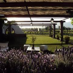 Bodega en Chacras de Coria: Salas de conferencias de estilo  por Vilder SA