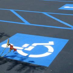 NOUVELLE. | Proje Danışmanlık – Engelli Otopark Düzenlemeleri:  tarz Garaj / Hangar,
