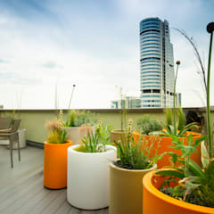 Vibrant Roof Terrace:  Terrace by Yorkshire Gardens