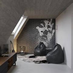 غرفة الميديا تنفيذ Aleksandra  Kostyuchkova, صناعي