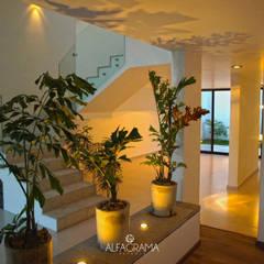 Corridor & hallway by Alfagrama estudio