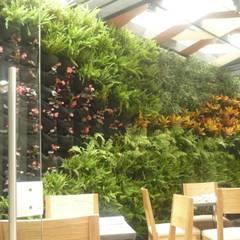 jardín vertical interior: Hoteles de estilo  por ARQUIOBRA
