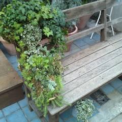 庭と古いベンチのあるファサード: Shikinowa Designが手掛けた商業空間です。