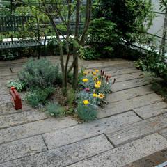 千代田区・Sオフィス(屋上): 有限会社イエナランドスケープが手掛けた庭です。,オリジナル