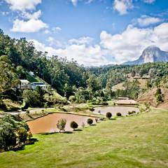 Garden by Carlos Eduardo de Lacerda Arquitetura e Planejamento , Country