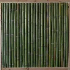 Bambus Zaun Greenline:  Terrasse von Bambuskontor