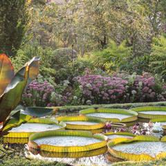 Domenico Montevecchi's Garden: Giardino in stile  di Rosanna Castrini Garden Photography