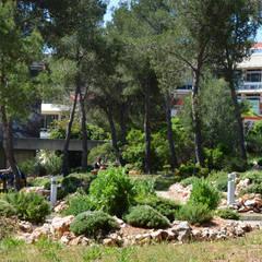 Projekty,  Szkoły zaprojektowane przez Landscape Design Environnement