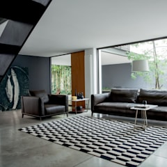 Living room by Alberta Pacific Furniture, Modern