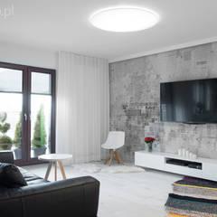 Apartament w Krakowie: styl , w kategorii Salon zaprojektowany przez MINIMOO Architektura Wnętrz