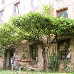 eclectic Garden by FRANCIS BENINCA