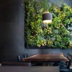 Vertiwall: Murs de style  par PLANTES ARBRES ET JARDINS