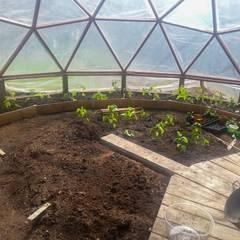 invernadero: Jardines de estilo  por smart domos