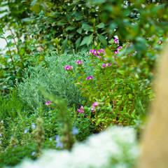 Jardín Rústico con toque chic en Extremadura: Jardines de invierno de estilo  de Landscapers