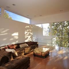 Salas multimedia de estilo  de Echauri Morales Arquitectos,