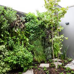 CASA COLINA DEL MIRADOR: Jardines de estilo  por VERDE360 ,Moderno