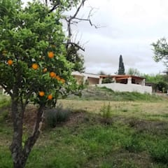 Casa del año 1867  remodelada a nueva : Jardines de estilo  por Liliana almada Propiedades