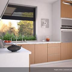 Wizualizacja wętrza projektu domu Umbra: styl , w kategorii Kuchnia zaprojektowany przez Biuro Projektów MTM Styl - domywstylu.pl