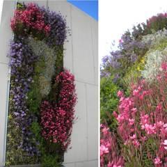 JARDINES VERTICALES: Jardines de estilo  por L&S arquitectos