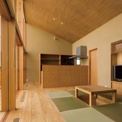 Media room by 中山大輔建築設計事務所/Nakayama Architects