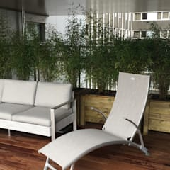 Une terrasse à Paris: Terrasse de style  par DCPAYSAGE