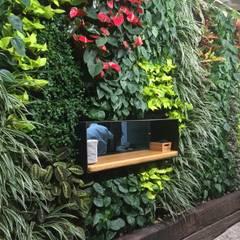 Jardines de estilo  por Terapia Urbana, Diseño de jardines verticales