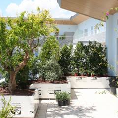 Hiên, sân thượng by Febo Garden landscape designers
