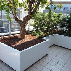 Terrazas de estilo  por Febo Garden landscape designers
