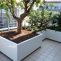 Teras by Febo Garden landscape designers