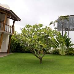 منازل تنفيذ Tânia Póvoa Arquitetura e Decoração