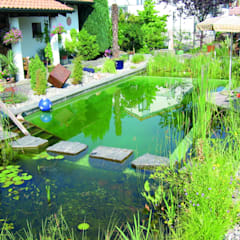 Bio Göl Havuz (Biyolojik Gölet ve Havuz Yapısalları) – Örnek Projeler:  tarz Havuz