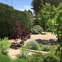 Contemporary Garden : mediterranean Garden by Azarbe jardines