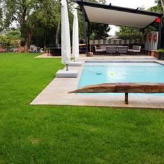 Lynnwood Strubenkop Estate :  Pool by Gorgeous Gardens