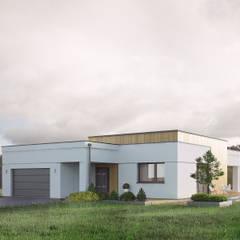 Wizualizacja projektu domu Alibi: styl , w kategorii Domy zaprojektowany przez Biuro Projektów MTM Styl - domywstylu.pl