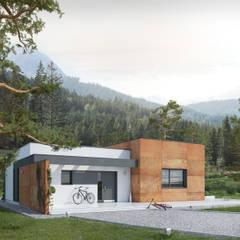 Wizualizacja projektu domu Amika - propozycja 1: styl , w kategorii Domy zaprojektowany przez Biuro Projektów MTM Styl - domywstylu.pl