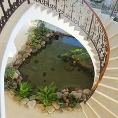Projeto Lago Chandelier: Jardins tropicais por Agua Viva Lagos e Paisagismo