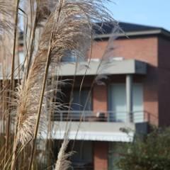 TERRAZAS DE SAN LORENZO: Terrazas de estilo  por Proyecto Norte