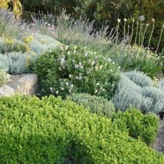 Garden by andré nascimento-arquitetura paisagista