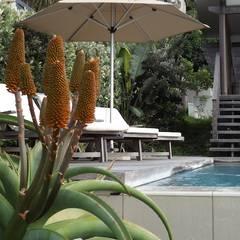 Beach Home:  Garden by Simon Clements: Garden & Landscape Design