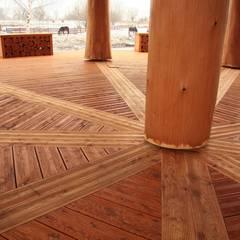 Altana w Nakle nad Notecią: styl , w kategorii Taras zaprojektowany przez Organica Design & Build