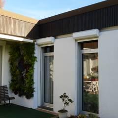 Végétaux naturels - Mur végétal extérieur (terrasse): Jardin de style  par Vertical Flore, Tropical