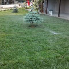 konseptDE Peyzaj Fidancılık Tic. Ltd. Şti. – M.B KONUTU HAZIR RULO ÇİM UYGULAMASI: klasik tarz tarz Bahçe