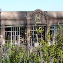 Enigma Mansion:  Garden by Urban Landscape Solutions, Mediterranean