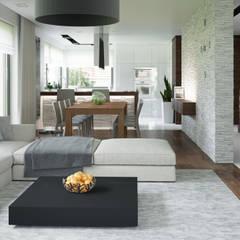 Projekt domu HomeKONCEPT-01- projekty domów z wnętrzami: styl , w kategorii Salon zaprojektowany przez HomeKONCEPT | Projekty Domów Nowoczesnych