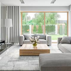 Projekt domu HomeKONCEPT-11- wnętrze: styl , w kategorii Salon zaprojektowany przez HomeKONCEPT | Projekty Domów Nowoczesnych