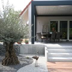 Escaliers: Jardin de style  par Schwein Aménagement, Moderne
