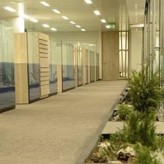 Proyecto en oficinas de Energìa Andina.: Ventanas de estilo  por Ignisterra