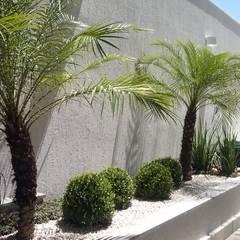 Garden by Mateus Motta Paisagismo, Tropical