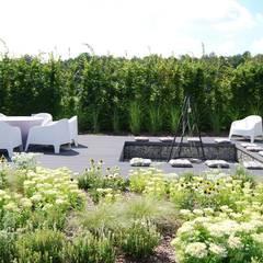 Ogród w Katowicach: styl , w kategorii Ogród zaprojektowany przez MUGO OGRODY
